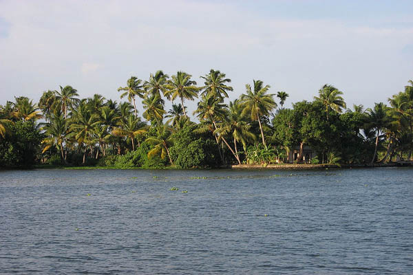 Alleppey Backwaters Kerala Tour Package Site