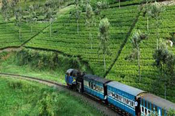 Ooty toy train Kerala Tour Package Site
