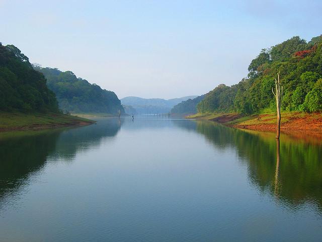 Periyar Tiger Reserve Kerala Tour Package Site