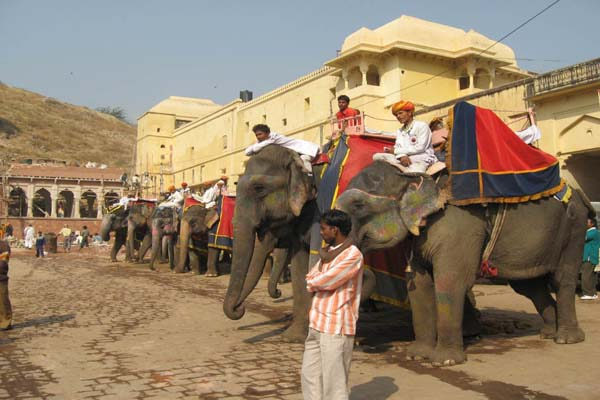 royal rajasthan tour with taj tigers Kerala Tour Package Site